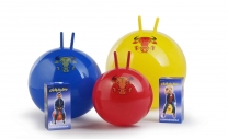 ledragomma-gymnastikball-visi-dez_1464688676-4a6e177d6c5be25c7f88b6ef4c67ae7d.jpg